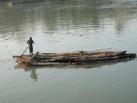 Boats transferring wooden logs on the rivers near Barisal